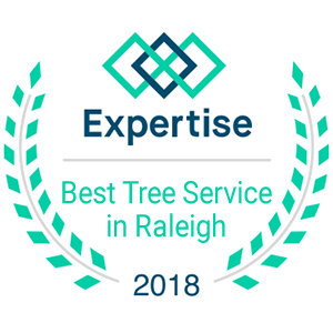 A+ Tree & Crane Services - Expertise Best Tree Service